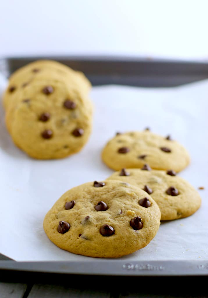 Here's a recipe for soft and chewy Chocolate Chip cookies that you will feel less guilty chomping down a few because it contains whole wheat flour too!