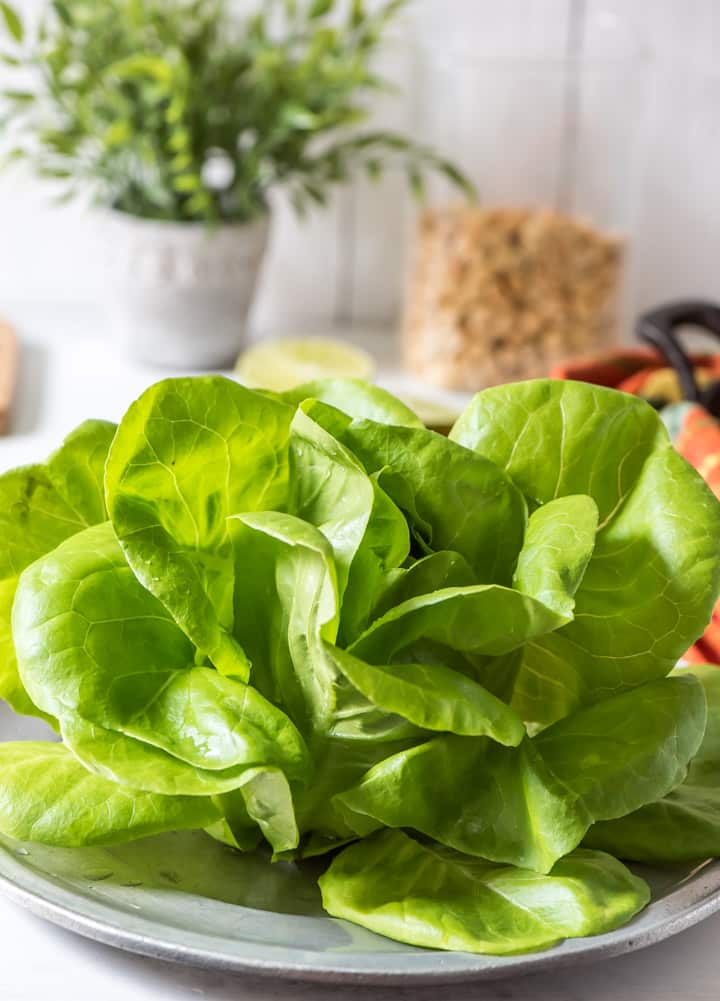 A closeup of butter lettuce