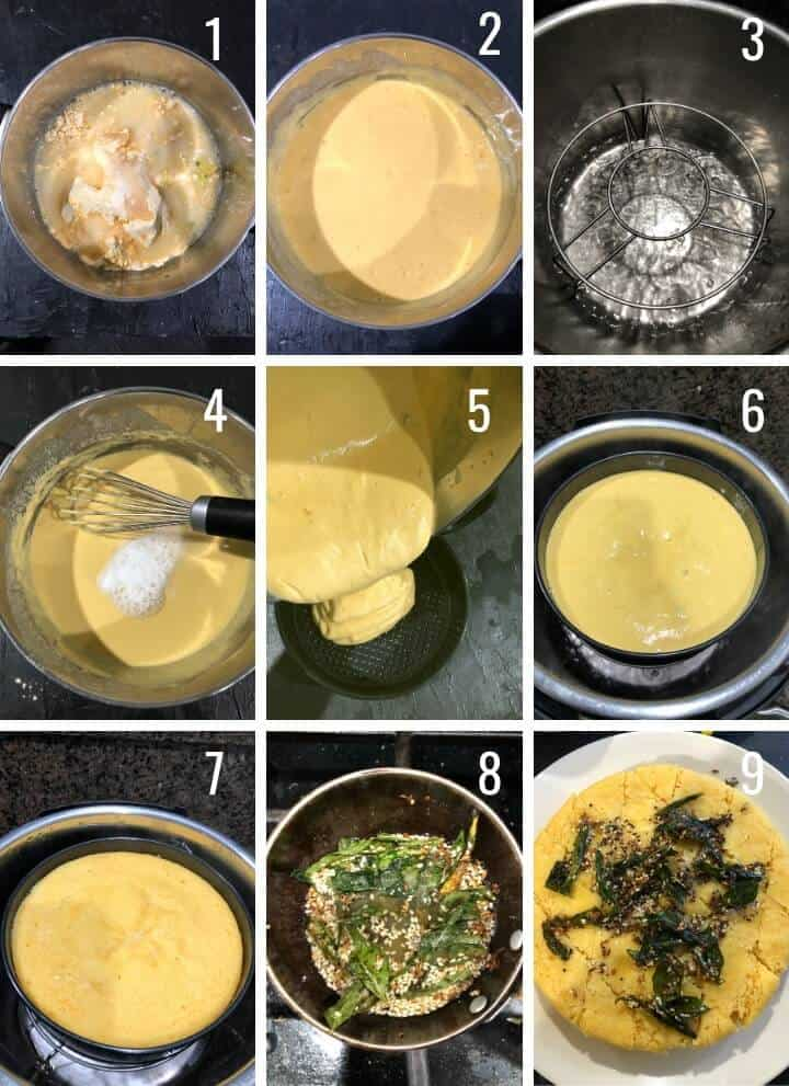 A collage of 9 images showing how to make Nylon Khaman Dhokla in Instant Pot