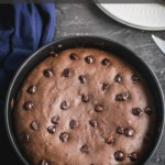 A springform pan with chocolate chip brownies and the words Instant Pot Brownie Recipe at the top.