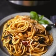 A grey plate with vegetarian spaghetti with a silver fork on the right and basil in the back with the instant pot behind the plate and the words Instant Pot Pasta in under 30 minutes at the top.