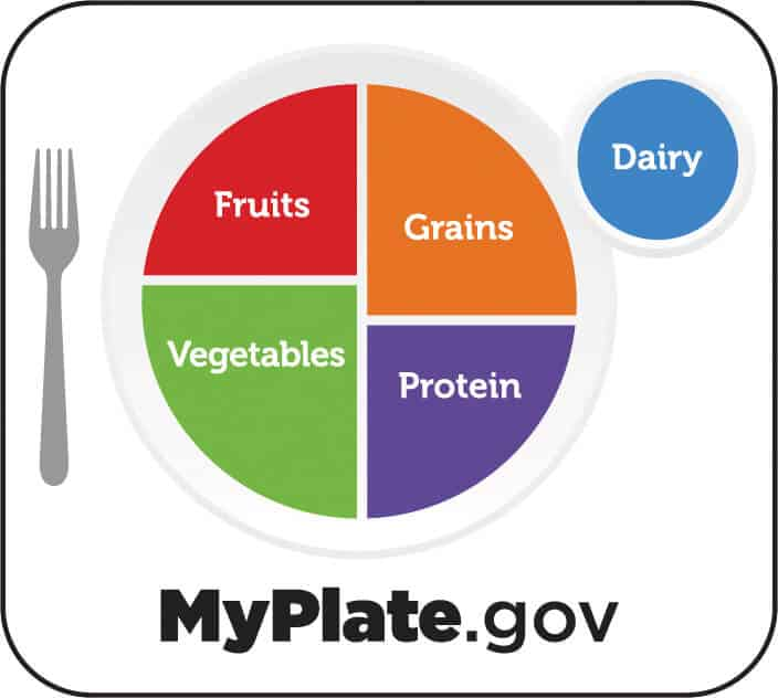 A depiction of USDA my plate concept. A plate is divided into fruits, grains, vegetables and proteins.